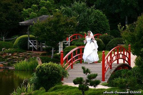 Garden Bride by eafy