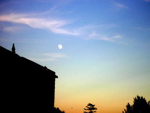 Night sky by Fran