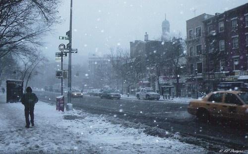 Harsh Winter by EmilyP
