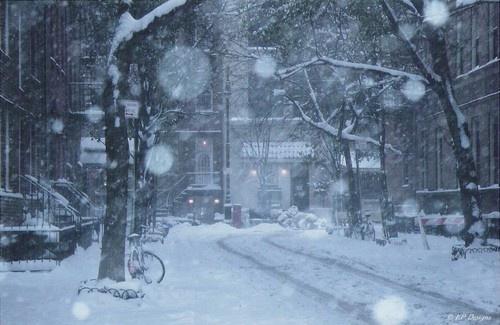 Winter Wonderland by EmilyP