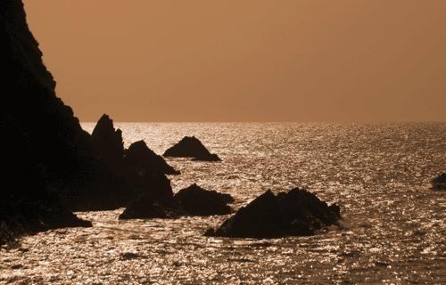 Shore Thing by Kim Walton