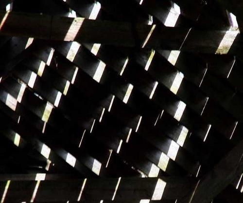 sunlight by manicam