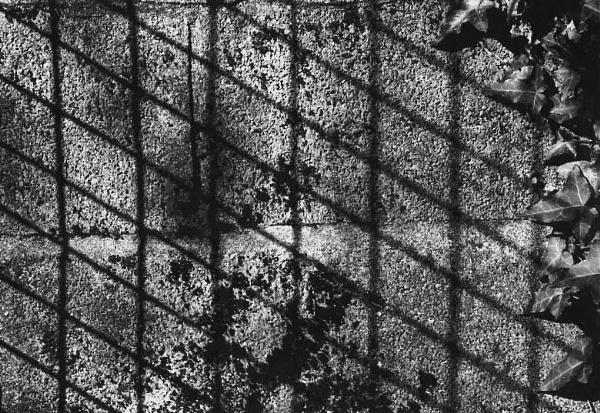 Grid by spaceman