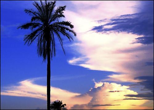 Sunset by alexya85