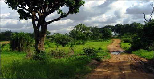 Landscape by alexya85