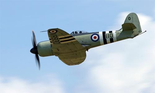 Hawker Sea Fury by big fella