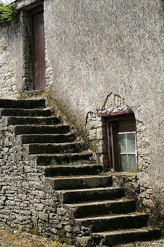 14 steps by thearmsofvenusdemilo
