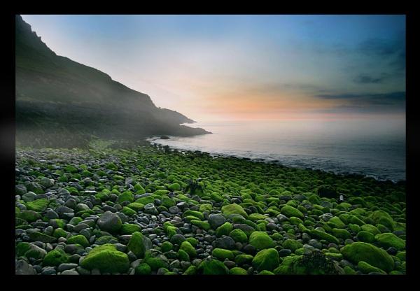 jersey,s north coast by scottingham