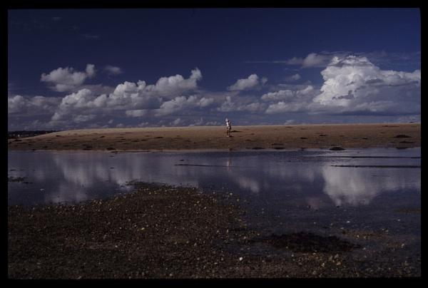 low tide jersey by scottingham