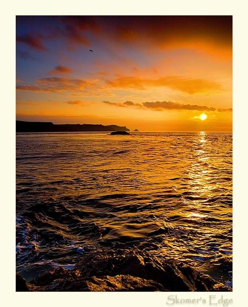 Skomer Coast by AdrianTurner