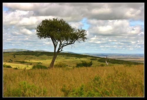 Mara View by AntonR