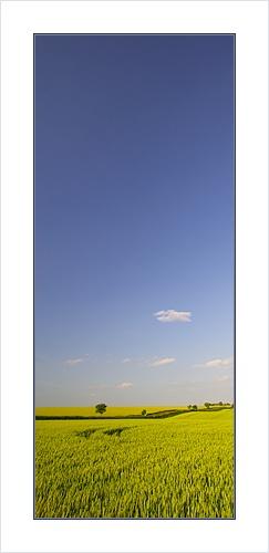 Big sky by Ewan
