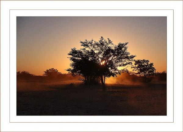 Bush Fire by jules41