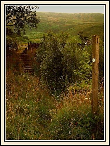 Derbyshire Footpath by joan duckett