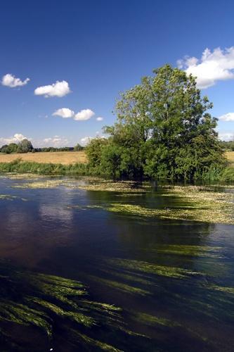 River Avon by peterhorner