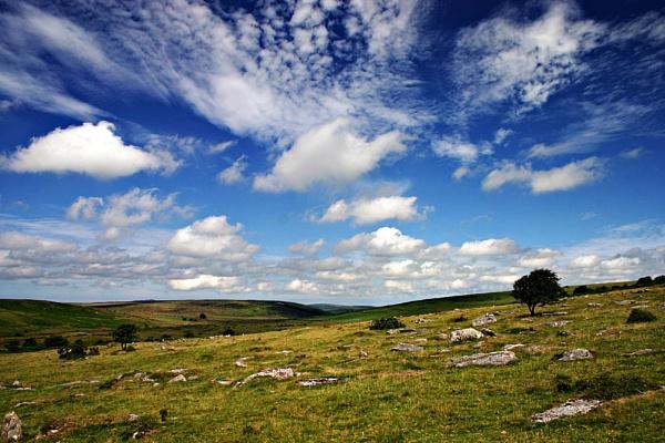 Bodmin Moor by Saxon Marsh