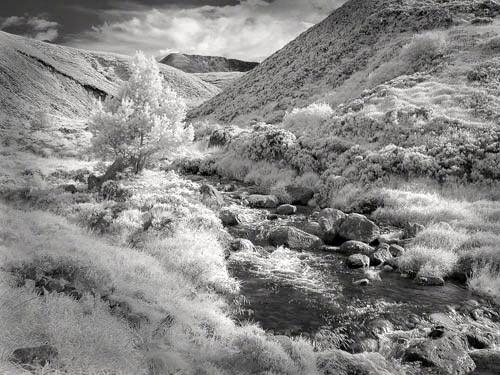 Cairngorm Valley by gpwalton