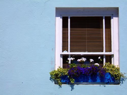 Window by Coza
