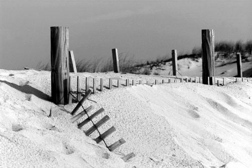 The Beach by thetriguy