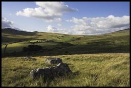 Nr Merrivale, Dartmoor