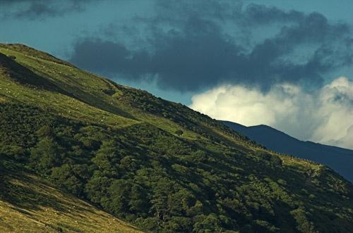 Telephoto landscape by saxon_image
