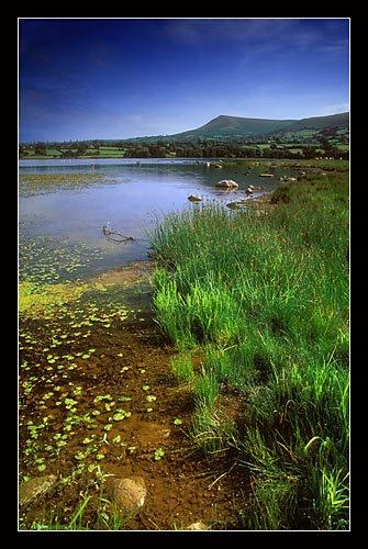Mynydd Troed from Llangasty by jond
