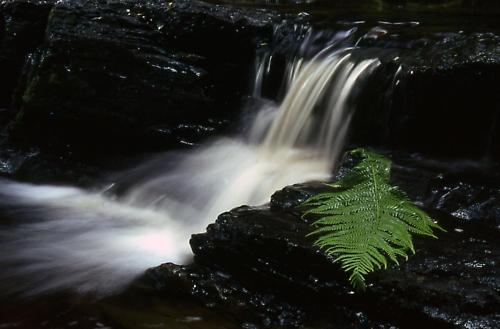 Waterfall by davidcollins