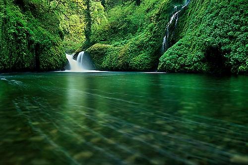 Neverland by Wildphoto