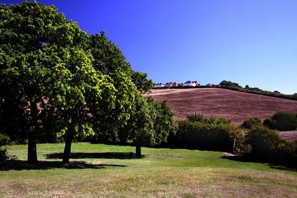 ? Essex landscape? by NickCoker