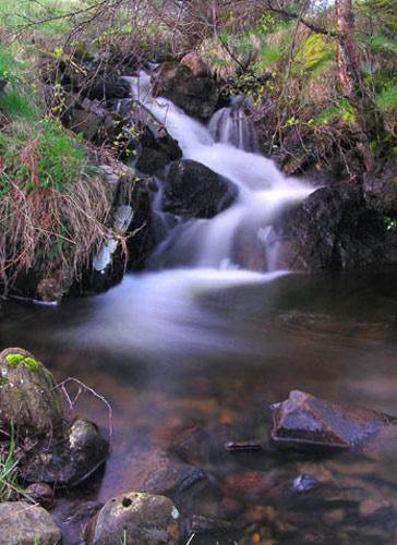 Stream by richardwheel