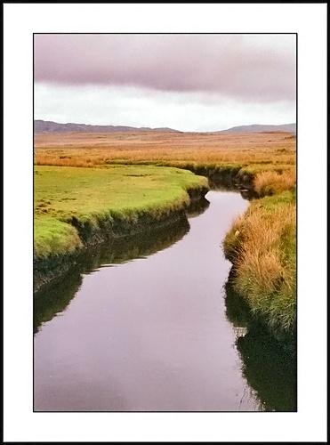 Bog River by mark.kavanagh