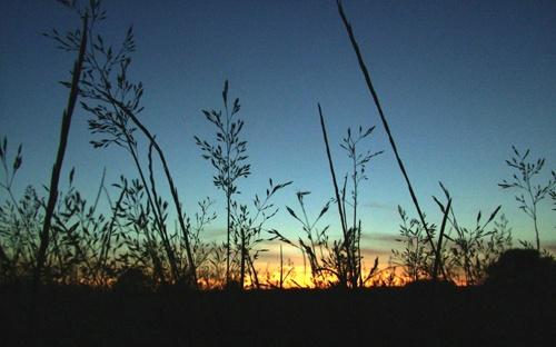 Sunset by lukey_b