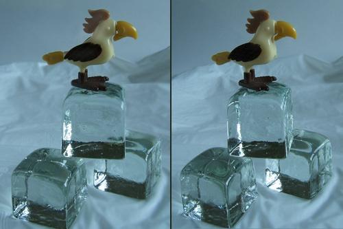 Iceberd! ......in 3D by LenLamb