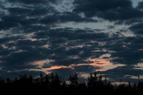 Darkening Sky by clayman