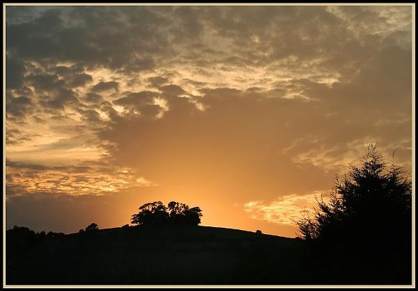 Golden moment by naturenut