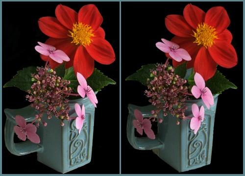 \'Flowers in a Mug\' in 3D. by LenLamb