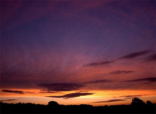 Dawning Light by buckleyi