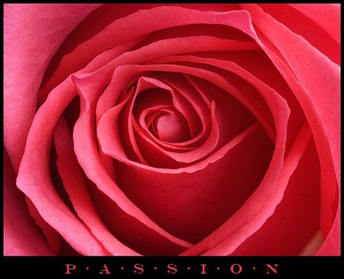 Passion by Dennis.Alden