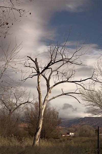 Postcard from Utah by gajj