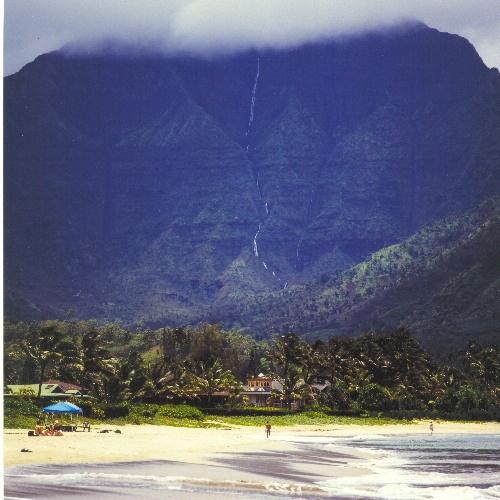 Tropical paradise by matt5791