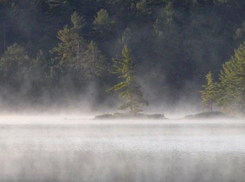 Misty lake by Shelley