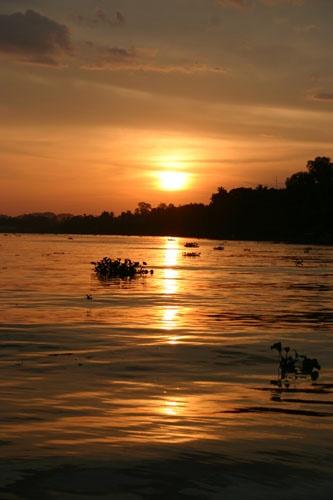 Sunset on the Kinabatangan River by DebnIan