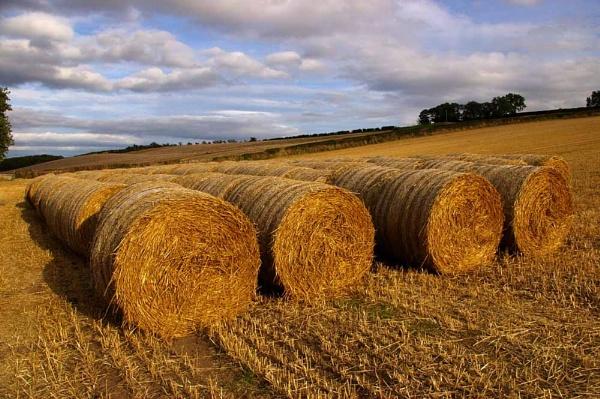 Flodden Field by johnriley1uk
