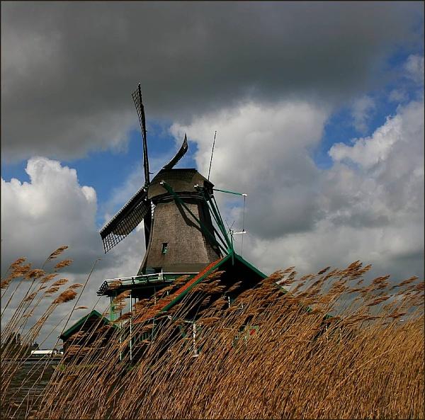 Windmillscape (re-post) by conrad
