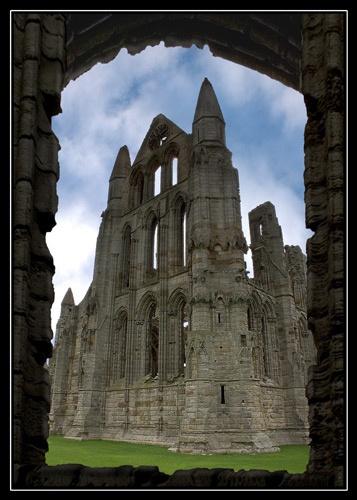 Abbey by buckleyi