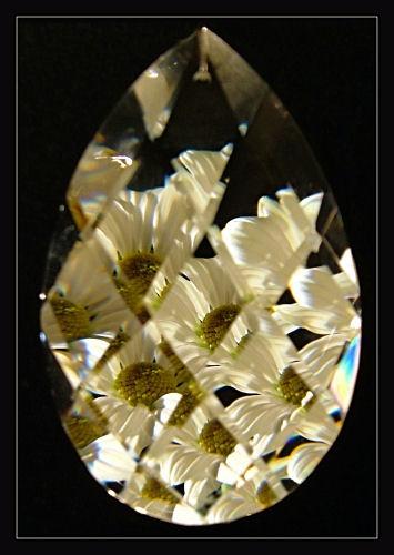 Crystal Flower by cattyal