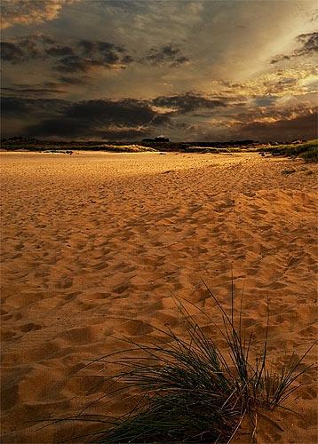 Studland Bay by Kris_Dutson