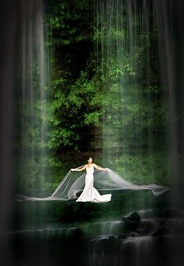 The Veil by Kim Walton