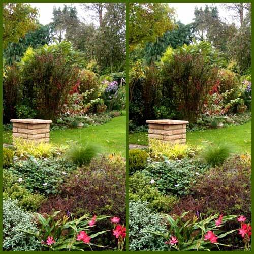 October Garden by LenLamb