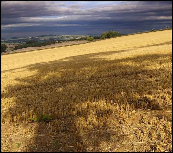 Flodden Field 2 by johnriley1uk